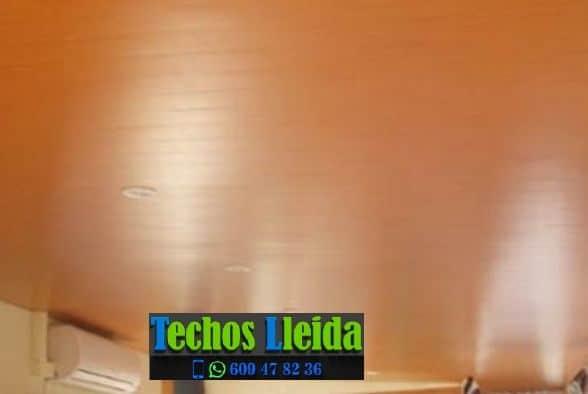 Empresa de Falsos Techos Aluminio Lleida Catalunya