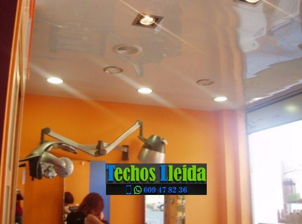 Presupuestos de techos de aluminio en Juncosa Lleida