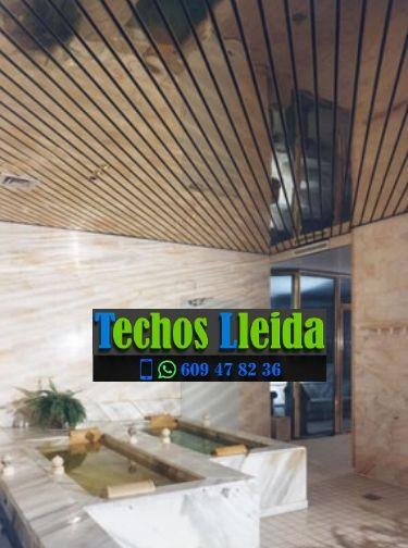 Techos de aluminio en Granyena de les Garrigues Lleida