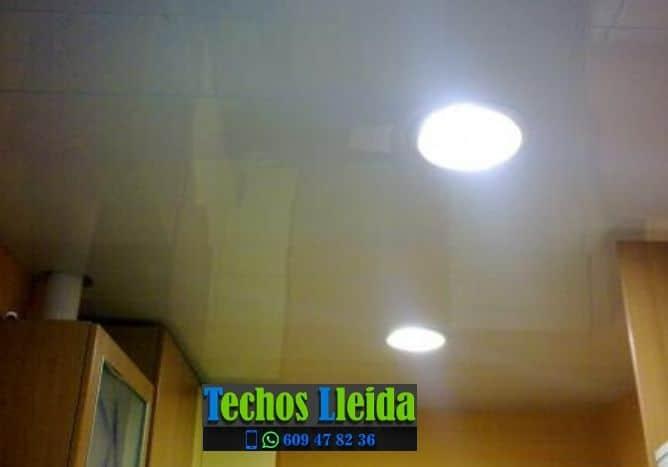 Techos de aluminio en La Portella Lleida