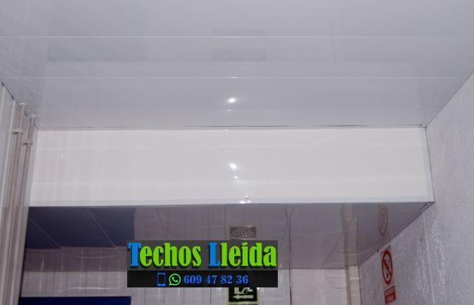 Techos de aluminio en Vilanova de la Barca Lleida